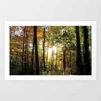 Golden October Art Print
