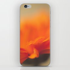 Orange Sun iPhone & iPod Skin