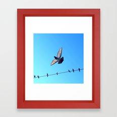 bird set free Framed Art Print