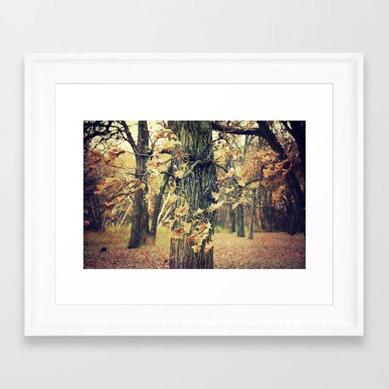 Wilted Beauty Framed Art Print