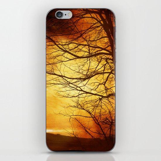 Misty Sunset iPhone & iPod Skin