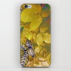 leaves evolved 1 iPhone & iPod Skin