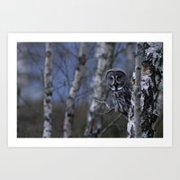 GREAT GREY OWL PEERING ROUND TREE Art Print
