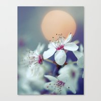 Oriental Blossom Canvas Print