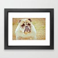 Portrait Of A Lady Framed Art Print