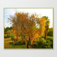 Our Golden Willow Canvas Print