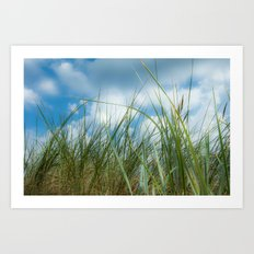Dreaming in the grass Art Print