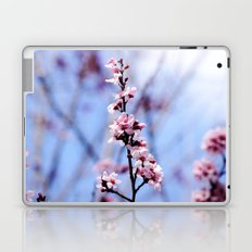 Signs of Spring 1 Laptop & iPad Skin
