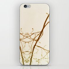 branches#01 iPhone & iPod Skin
