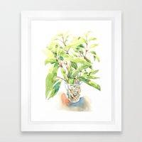 A glass of plant Framed Art Print