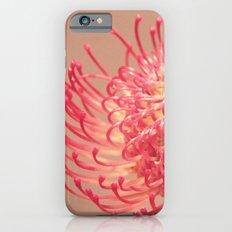 Philadelphia Flower Show iPhone 6 Slim Case