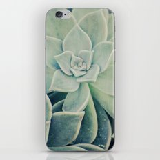 Botanical -- Jade, Mother-of-pearl, Ghost Plant Leaves iPhone & iPod Skin