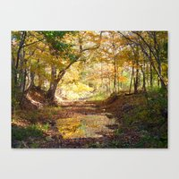 One Fall Morning Canvas Print