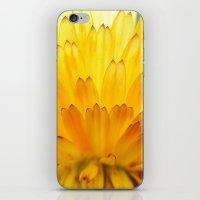 Overwhelming Beauty iPhone & iPod Skin