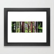 Australian Native Coastal Rainforest Framed Art Print