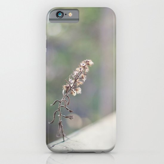 Coquette fence iPhone & iPod Case