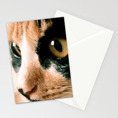 Thinking Cat Stationery Cards