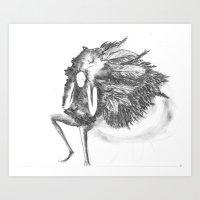 Featherette Art Print