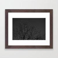 Timber Veins Framed Art Print