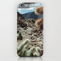 iPhone & iPod Case featuring Cholla Frame by Kevin Russ
