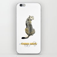 acinonyx jubatus iPhone & iPod Skin