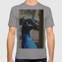 Mr Peacock Mens Fitted Tee Athletic Grey SMALL