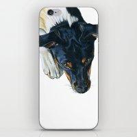 Swedish Farm Dog iPhone & iPod Skin