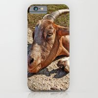 iPhone & iPod Case featuring Mr. Goat by AmberRinaldi