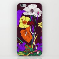You are a rainbow iPhone & iPod Skin