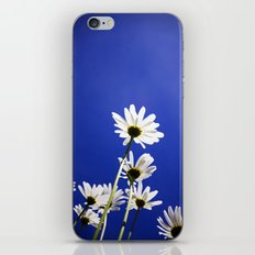 Daisies of the universe iPhone & iPod Skin