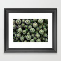 Fracti Framed Art Print