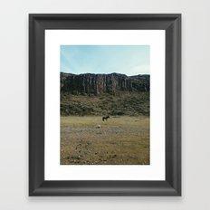 Rock Pasture Pony Framed Art Print