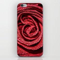 Raindrop Rose iPhone & iPod Skin