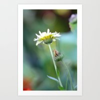 colourful depth of field Art Print