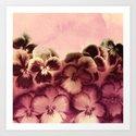 vintage tones pansies Art Print
