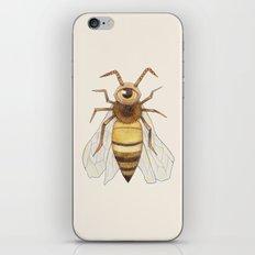 beye iPhone & iPod Skin