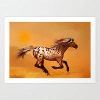 HORSE - An Appaloosa Cal… Art Print