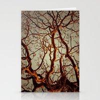 Tree Light Stationery Cards