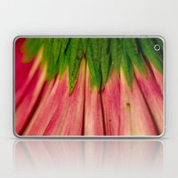 Petals Of Pink Laptop & iPad Skin