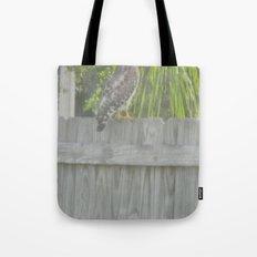 Falcon gazing Tote Bag