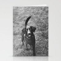 Dog 1 Stationery Cards