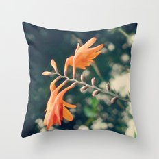 udabarriko lorie Throw Pillow
