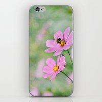 Summer Sweet Summer iPhone & iPod Skin
