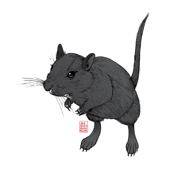 Gerbil Off Art Print