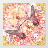 hummingbird dream Canvas Print