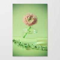Spring Essentials Canvas Print