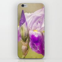 Painted Iris iPhone & iPod Skin