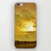 Comeback iPhone & iPod Skin
