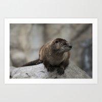 Doin' What He Otter Art Print