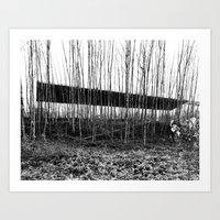 Forest Illusion Art Print